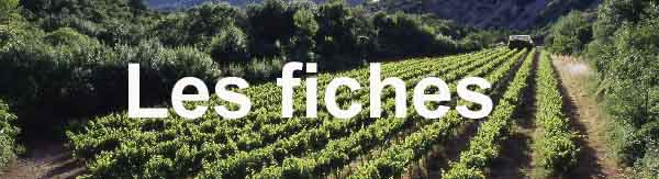 - Chambre agriculture languedoc roussillon ...
